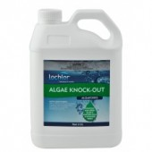 Algae Knockout